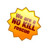 Mimi's Rescue